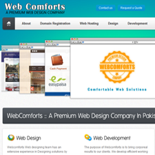 Professional Web Design Firm in Pakistan